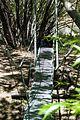 Puente colgante Rio Pinturas.jpg