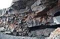 Puna coast with lava rocks (a0004886) - panoramio.jpg