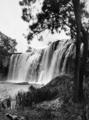 Queensland State Archives 1307 Millstream Falls near Ravenshoe NQ c 1935.png