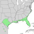 Quercus virginiana range map 1.png