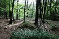 Radevormwald Feckinghausen - Landwehr 02 ies.jpg