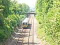 Railway Cutting by Leasers Barn - geograph.org.uk - 818894.jpg