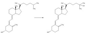 English: Enzymatic conversion of cholecalcifer...