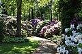 Rhododendronpark Bremen 20090513 040.JPG