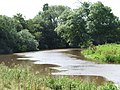 River Derwent South Of Kexby - geograph.org.uk - 921257.jpg