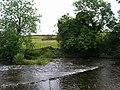 River Kent - geograph.org.uk - 491289.jpg