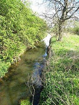 River Skerne - geograph.org.uk - 422464