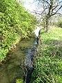 River Skerne - geograph.org.uk - 422464.jpg