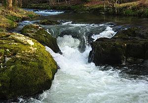 River Walkham - River Walkham near Buckator