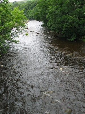 River Wear - The wooded riverbanks of the Wear as it flows from Stanhope to Frosterley