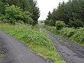 Roads at Cashelard - geograph.org.uk - 884388.jpg