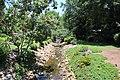 Rock Quarry Garden, Greenville SC June 2019 4.jpg