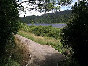 English: Walking path around Lake Rotokare
