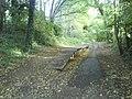 Roundwood Halt Platform - geograph.org.uk - 990953.jpg
