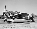 Royal Air Force 1939-1945- Fighter Command CH9824.jpg