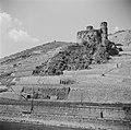 Ruïne Burg Ehrenfels in de wijngaarden op de Rüdesheimer Berg, Bestanddeelnr 254-1180.jpg