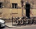 Rue Buffon, Paris, mai 2013.jpg