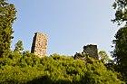 Ruine Burg Roggebach im Steinadal.jpg