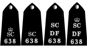 Special Constabulary - Variants of epaulettes used by different forces, comprising collar number, divisional call sign and Special Constabulary insignia
