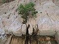 Saklikent canyon - panoramio (2).jpg