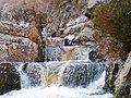 Salmon Ladder - geograph.org.uk - 357083.jpg