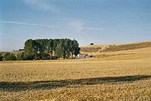 San Bol – Wikipedia
