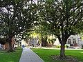 San José State University - DSC03937.JPG