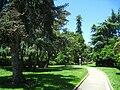 San Mateo Arboretum, San Mateo, CA - IMG 9070.JPG