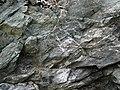 Sandorite intrusive contact with country rock (Sandor Dike, Neoarchean, 2.703 Ga; Route 17 roadcut northeast of Wasp Lake & north of Wawa, Ontario, Canada) 3 (48342270981).jpg
