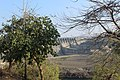Sardar sarovar dam, on the Narmada river (12).jpg