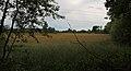 Schale Naturschutzgebiet Fledder 01.JPG