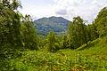 Scotland Highlands (19043473260).jpg