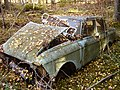 Scrap car in the woods.JPG