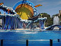 SeaWorld Spectacle13.JPG