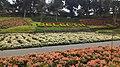 Selecta Recreational Park.jpg