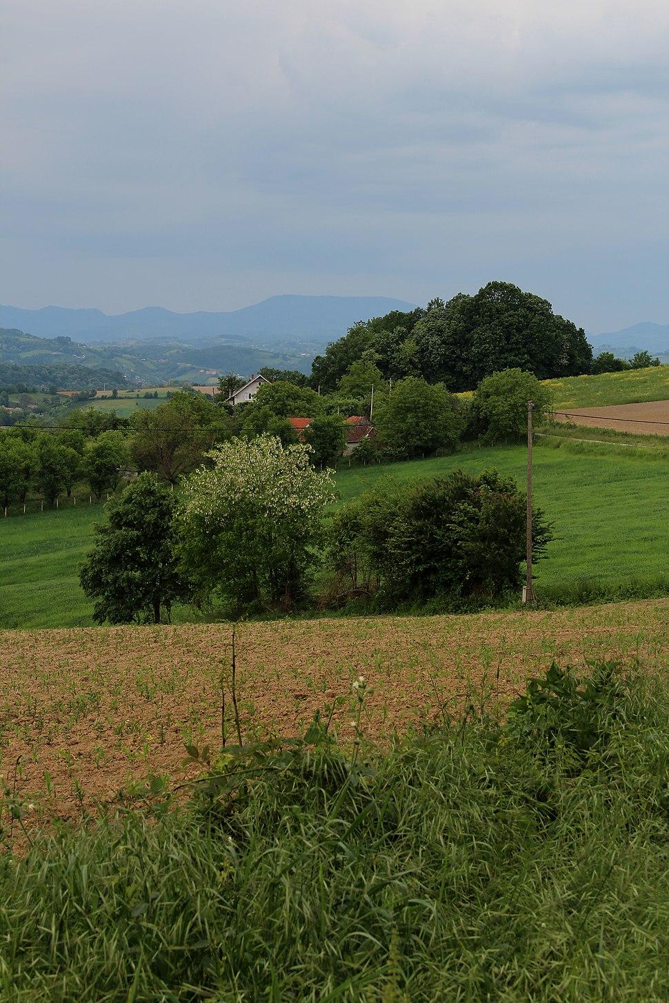 Selo Zlatarić - opština Valjevo - zapadna Srbija - Panorama 8