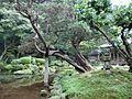 Sennyo-ji 06.jpg