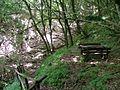 Sentiero 427 - panoramio (4).jpg