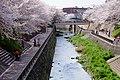 Shakujii River (25999812430).jpg
