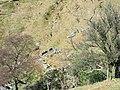 Sheepfold above the Afon Gafr ravine - geograph.org.uk - 436557.jpg