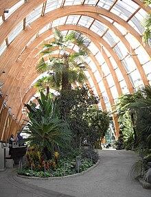 Sheffield Winter Garden - Wikipedia