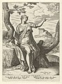 Sibille van Cumae Sibylla Cumaea (titel op object) Sibillen (serietitel), RP-P-OB-6621.jpg