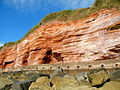 Sidmouth Cliff Face - geograph.org.uk - 1494791.jpg