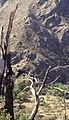 Sierra Nevada juni 1999 23.jpg