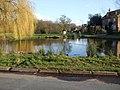 Skipwith Village Pond - geograph.org.uk - 1198681.jpg