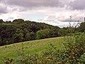 Small valley near Llwyn-y-brain, Cyffig - geograph.org.uk - 959985.jpg