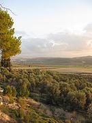 Soreq Valley IMG 1403.JPG