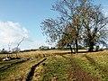Sow Dale, Old Bolingbroke - geograph.org.uk - 583801.jpg