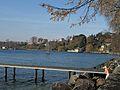 St-Prex-Lausanne-Ouchy (12.12.12) 21 (8270458178).jpg