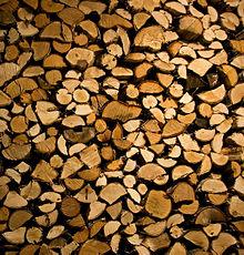 stapled birch wood